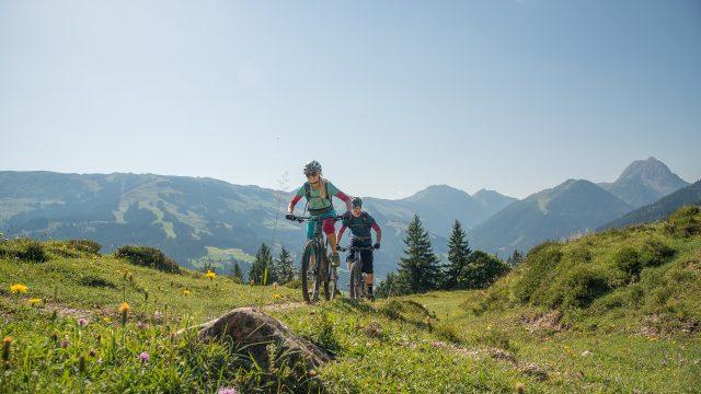 sommer mountainbiken panoramatour