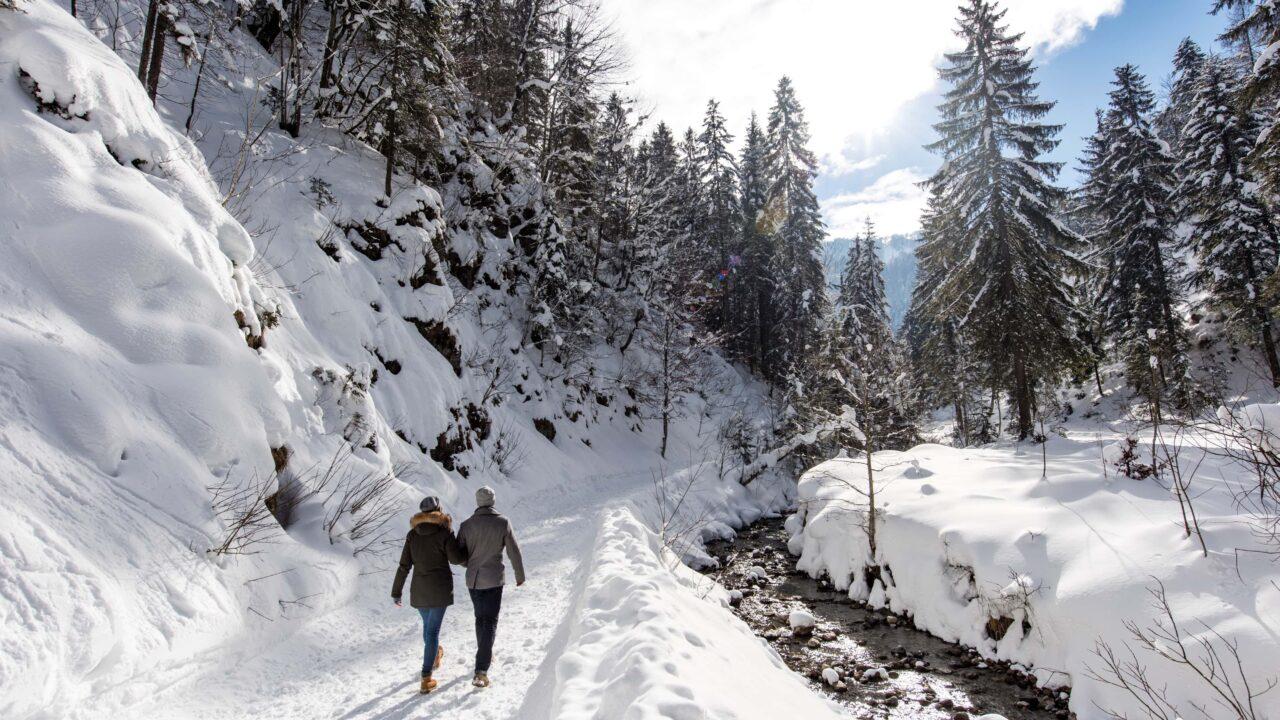 winterspaziergang neben gebirgsbach